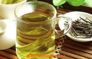 苦丁茶的功效与作用 苦丁茶的正确泡法